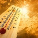 Words In Pen: During Hot Weather – What to Do to Prevent Heat Problems