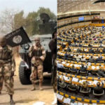 There's no progress in the fight against Boko Haram – EU