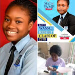 Beautiful 17-year-old girl who got 7 A1s in WAEC dies