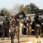 Finally, Borno Leaders accept to reintegrate  repentant Boko Haram Terrorists
